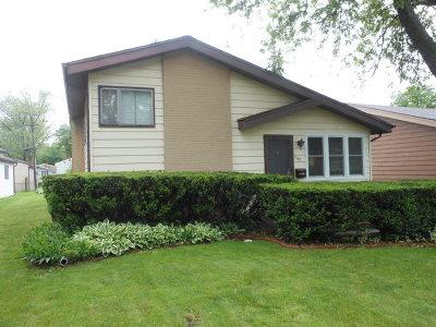 Villa Park Single Family Home For Sale: 546 North Wisconsin Avenue