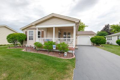 Grayslake Single Family Home For Sale: 619 Filly Lane