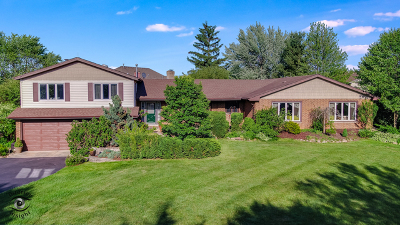 Orland Park Single Family Home For Sale: 15555 Wolf Road