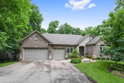 St. Charles Single Family Home For Sale: 6n827 Maple Avenue