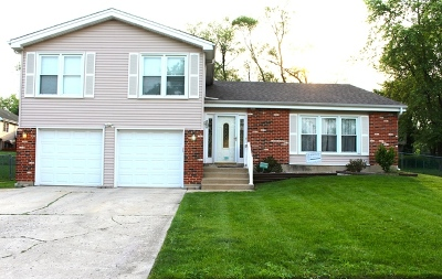 Bloomingdale Single Family Home For Sale: 316 Plymouth Lane