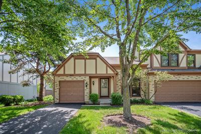 Hoffman Estates Condo/Townhouse For Sale: 4553 Topaz Drive