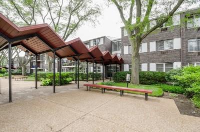 Skokie IL Condo/Townhouse New: $149,900