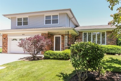 Schaumburg Single Family Home For Sale: 435 Timothy Court