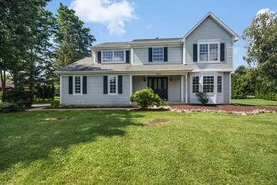 Spring Grove Single Family Home For Sale: 9831 North Hunters Lane