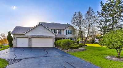 Hoffman Estates Single Family Home Re-Activated: 1470 Teal Court