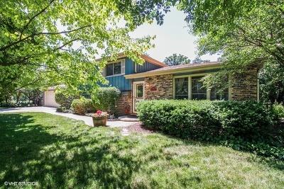 Glen Ellyn Single Family Home For Sale: 818 Pleasant Avenue