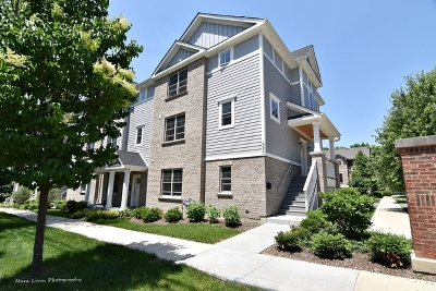 St. Charles Condo/Townhouse For Sale: 590 Ohio Avenue