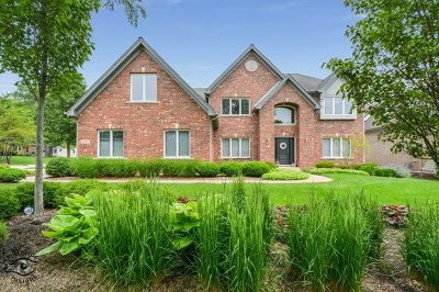 Downers Grove Single Family Home For Sale: 4701 Florence Avenue