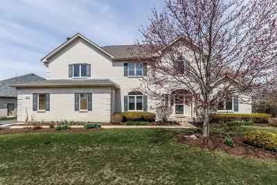 Roselle Single Family Home For Sale: 350 David Lane