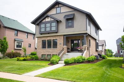 Homer Glen Single Family Home For Sale: 14627 Kildare Street