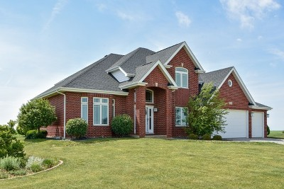 Beecher Single Family Home For Sale: 31010 South Klemme Road