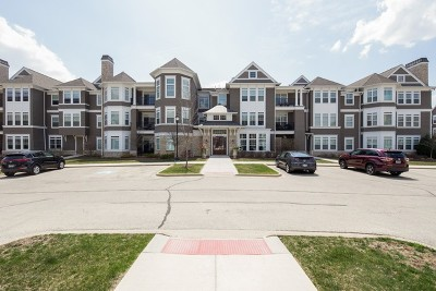 Hinsdale Condo/Townhouse For Sale: 8 East Kennedy Lane #101
