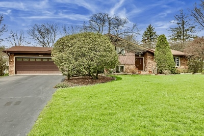 Burr Ridge Single Family Home For Sale: 8614 Meadowbrook Drive