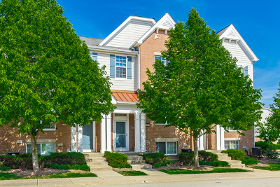 Lake Zurich Condo/Townhouse New: 1149 Chelsea Drive