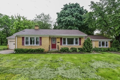 Arlington Heights Single Family Home For Sale: 1103 West Euclid Avenue