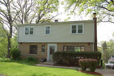 Barrington Single Family Home For Sale: 23380 North Summit Drive