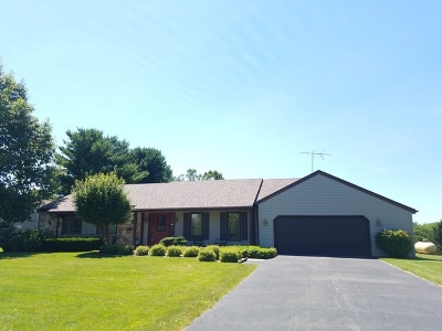Ogle County Single Family Home For Sale: 3130 North Silver Ridge Drive