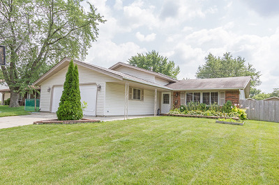Schaumburg Single Family Home For Sale: 415 Worcester Court
