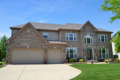 Hoffman Estates Single Family Home For Sale: 5412 Swan Circle