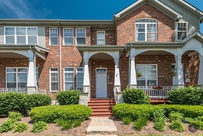 Lisle Condo/Townhouse For Sale: 1123 Ironwood Lane