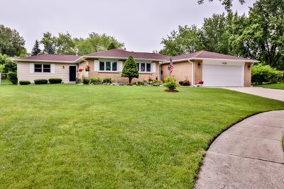 Schaumburg Single Family Home For Sale: 428 Redwood Lane