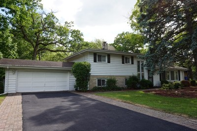 Carpentersville Single Family Home For Sale: 927 Rosewood Drive