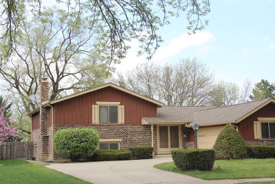 Arlington Heights Single Family Home New: 3241 North Volz Drive East