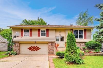 Streamwood Single Family Home For Sale: 712 Hayward Avenue