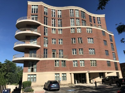 Naperville Condo/Townhouse For Sale: 520 South Washington Street #PH03