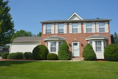 Crystal Lake Single Family Home New: 381 Sherbrooke Court