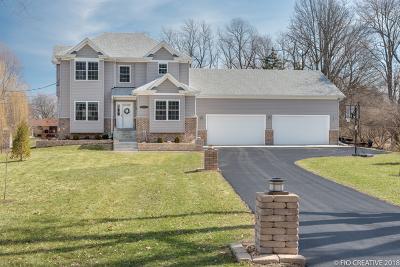 Villa Park Single Family Home For Sale: S651 Cornell Avenue