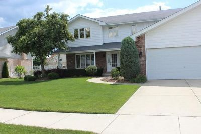 Tinley Park Single Family Home For Sale: 19531 Edgebrook Lane