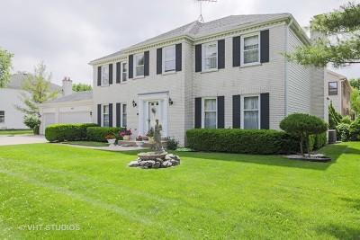 Hoffman Estates Single Family Home For Sale: 4920 Boulder Lane