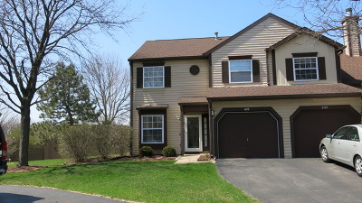 Streamwood Condo/Townhouse For Sale: 627 Ascot Lane