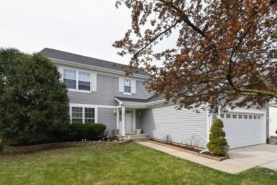Elgin Single Family Home For Sale: 1133 Little Falls Drive