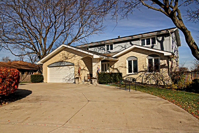 Orland Park Single Family Home For Sale: 12250 Partridge Lane