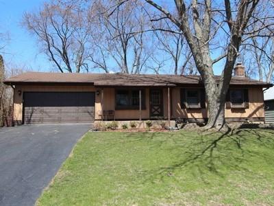 Lake Zurich Single Family Home For Sale: 950 Glencoe Terrace