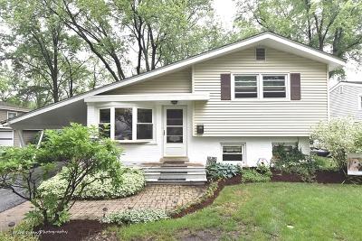 Glen Ellyn Single Family Home New: 587 Lowden Avenue