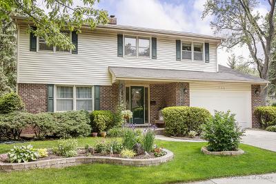 Glen Ellyn Single Family Home New: 566 Dorset Avenue