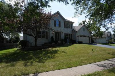 Bolingbrook Single Family Home For Sale: 593 Lavina Drive