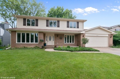 Lisle Single Family Home For Sale: 2868 Valley Forge Road