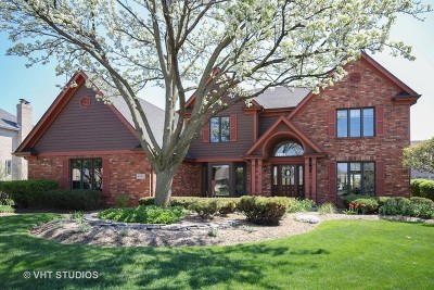 Orland Park Single Family Home For Sale: 14055 Marilyn Terrace