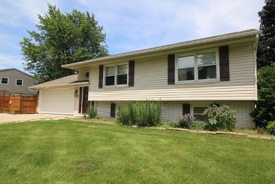 Streamwood Single Family Home For Sale: 101 David Drive