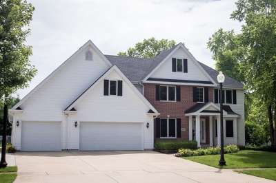 Channahon Single Family Home For Sale: 24347 South Dupage Drive