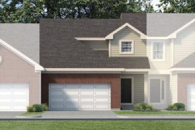 Oswego Condo/Townhouse For Sale: 223 Dorset Avenue