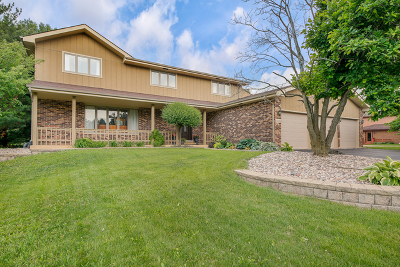 Lemont Single Family Home For Sale: 13103 Red Drive