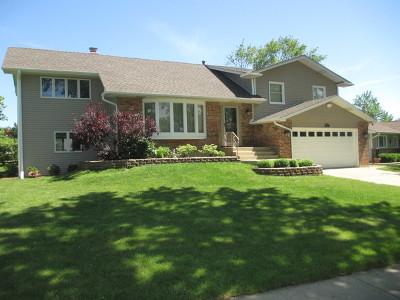 Schaumburg Single Family Home New: 224 West Beech Drive