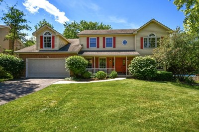Naperville Single Family Home For Sale: 432 Lampwick Court