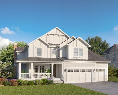 Glen Ellyn Single Family Home New: 234 Traver Avenue
